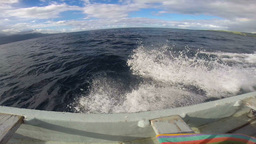 View of fast speedboat on ocean Footage