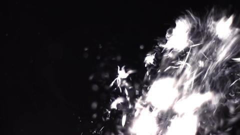 Particle Burst 03 Footage