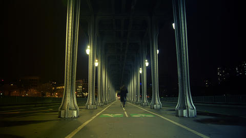 The pont de Bir-Hakeim,time lapse night,4k to mult Archivo