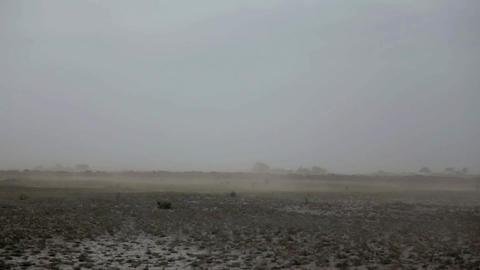 Dusty Barren Land stock footage