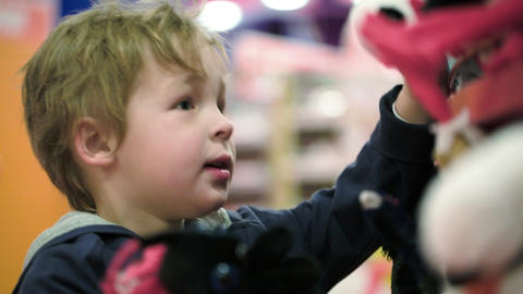Little child choosing soft toys in the shop Stock Video Footage