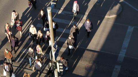 People walking across the road on zebra Footage