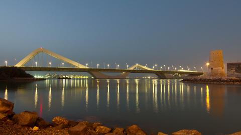 Sheikh Zayed Bridge Stock Video Footage