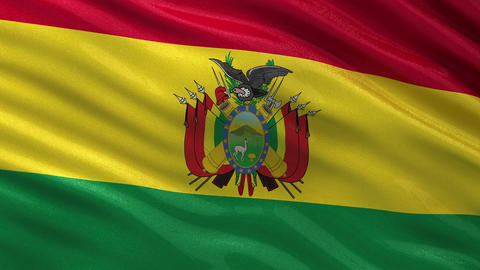 Flag of Bolivia seamless loop Animation