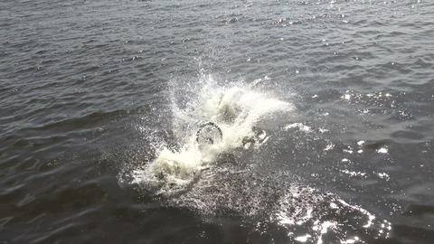 Jump on the bike into the water. 4K Stock Video Footage
