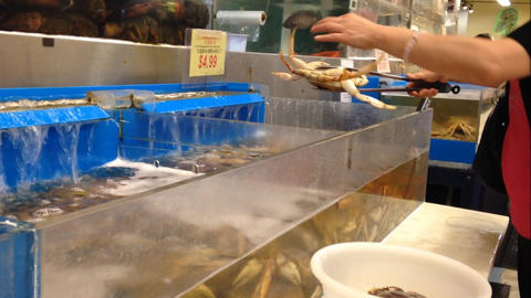 Woman buying fresh crab Live Action