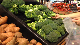 Woman selecting fresh broccoli in grocery store Stock Video Footage
