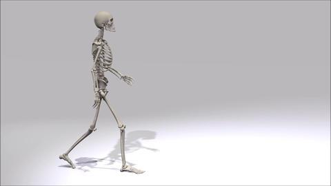 Walking Skeleton stock footage