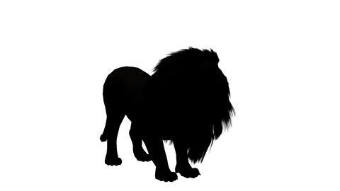 Lion howl trumpet,Endangered wild animal wildlife sketch silhouette Live Action