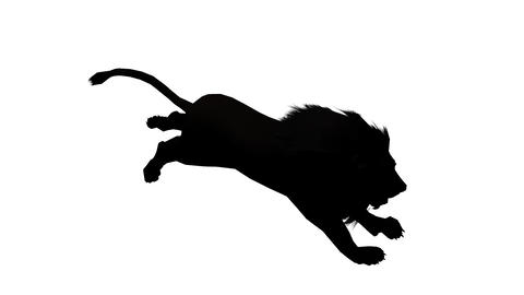 Lion run,Endangered wild animal wildlife running sketch silhouette Footage