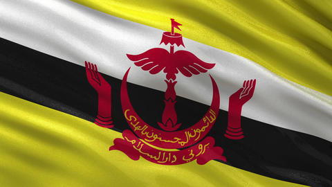 Flag of Brunei seamless loop Animation