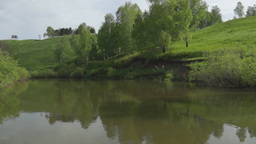 Calm summer landscape at the river Footage