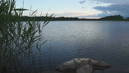 Calm evening at the summer lake Stock Video Footage