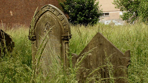 Neglected forgotten, overgrown with grass graves 4 Footage