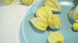 Physalis fruits Stock Video Footage