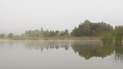 lake landscape in mist - trees and reeds reflected Footage