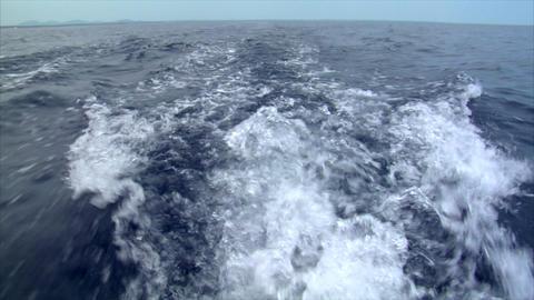 water swirl horizont Footage