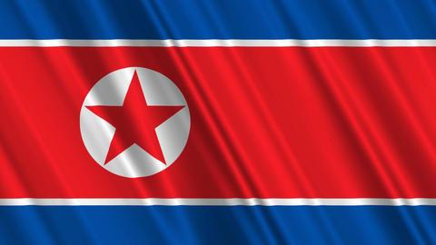NorthKoreaFlagLoop01 Stock Video Footage