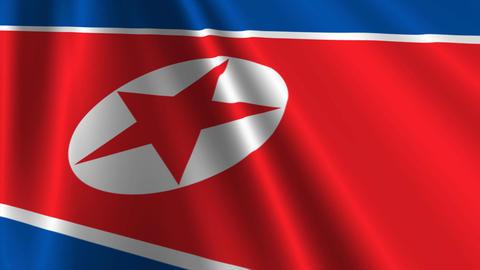 NorthKoreaFlagLoop03 Stock Video Footage