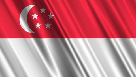 SingaporeFlagLoop01 Stock Video Footage