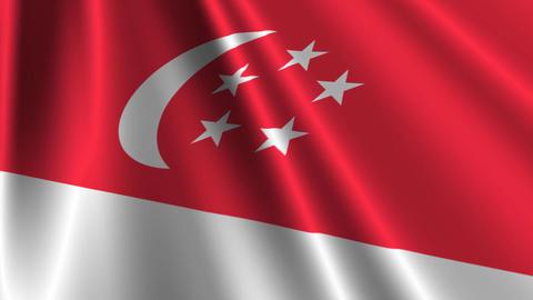 SingaporeFlagLoop03 Stock Video Footage