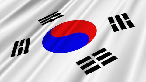 SouthKoreaFlagLoop02 Stock Video Footage