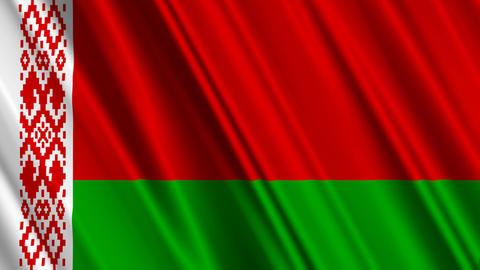 BelarusFlagLoop01 Stock Video Footage