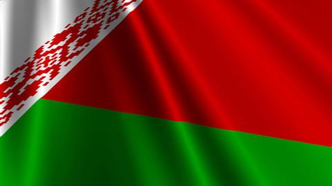 BelarusFlagLoop03 Stock Video Footage
