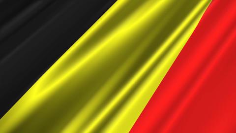 BelgiumFlagLoop02 Stock Video Footage