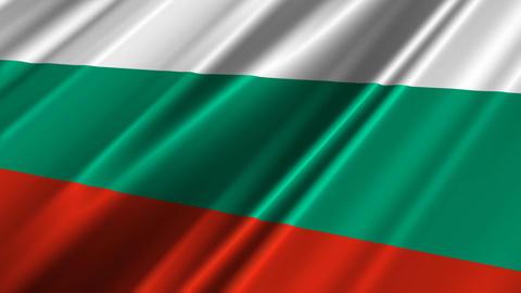 BulgariaFlagLoop02 Stock Video Footage
