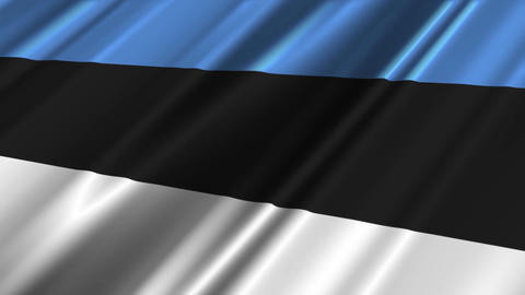 EstoniaFlagLoop02 Stock Video Footage