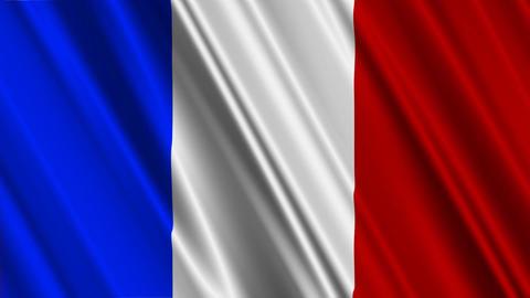 FranceFlag01 Stock Video Footage