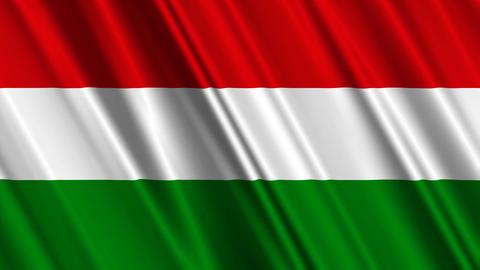 HungaryFlagLoop01 Stock Video Footage