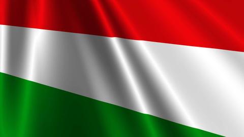 HungaryFlagLoop03 Stock Video Footage