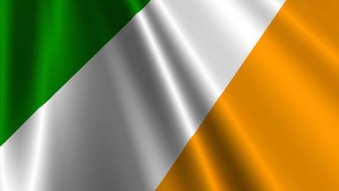 IrelandFlagLoop03 Stock Video Footage