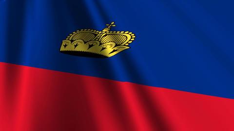 LiechtensteinFlagLoop03 Stock Video Footage