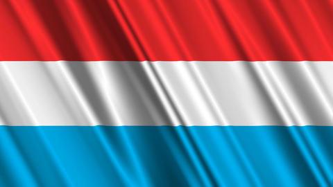 LuxembourgFlagLoop01 Stock Video Footage