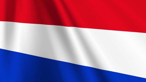 NetherlandsFlagLoop03 Stock Video Footage
