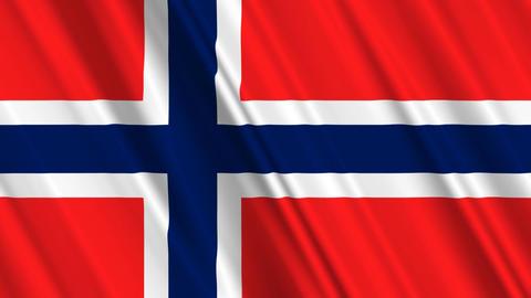 NorwayFlagLoop01 Stock Video Footage