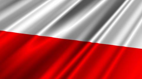 PolandFlagLoop02 Stock Video Footage