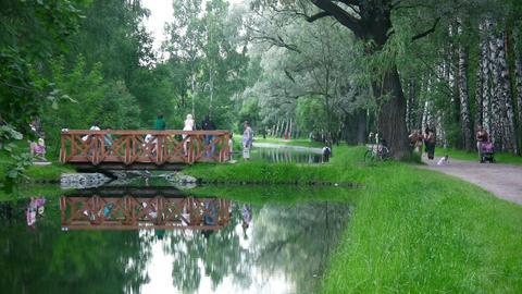 bridge on water in park Stock Video Footage