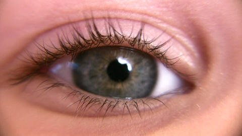child eye macro Footage