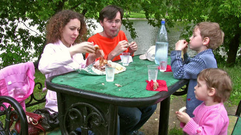 family picnic Stock Video Footage