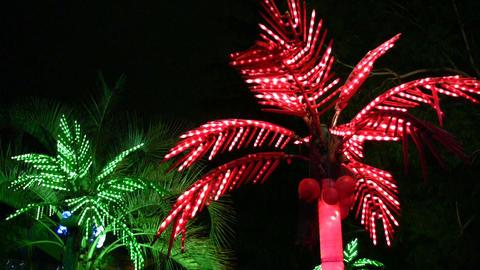 lighting palms Stock Video Footage