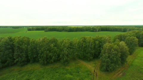 Agriculture. Aerial shot of the field Footage