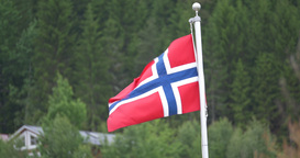 4K, Flag Of Norway, Forest Footage