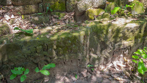Ruins of temple in Angkor timelapse Stock Video Footage