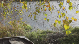 Autumn landscape at the riverbank Stock Video Footage