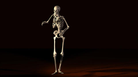 Skeleton Stock Video Footage