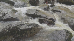 Rapid mountain stream Stock Video Footage